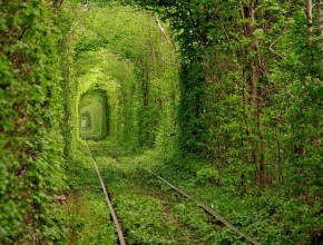 tunnel-of-love-22