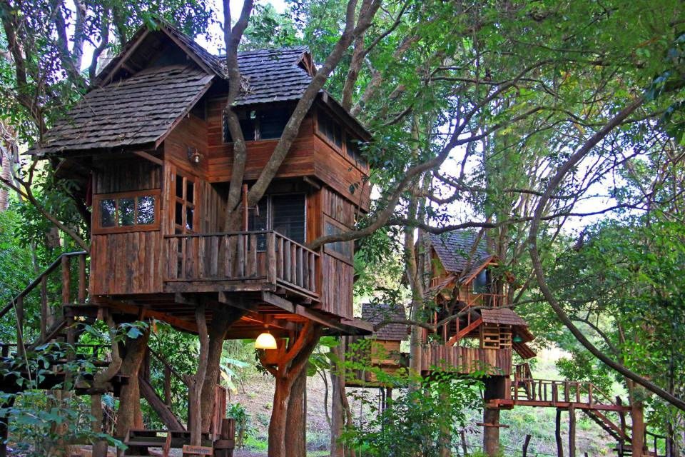 Treehouse Village In Thailand Suzzstravels